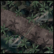 Roadway [C] Jungle +Night